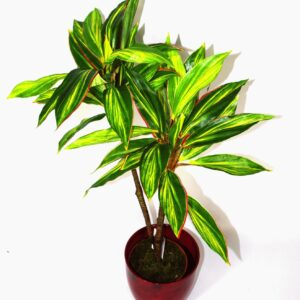 Artificial Large 90cm Dracaena Plant