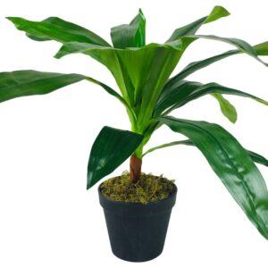 Fake Dracaena Plant