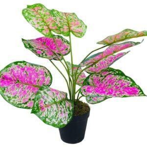 Artificial Dieffenbachia Plant 51cm