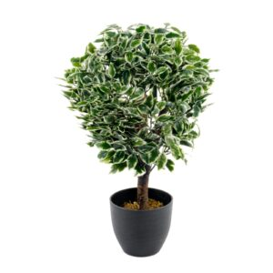 Artificial Variegated Ficus Ball 65cm