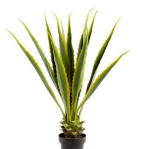 Fake Agave Plants