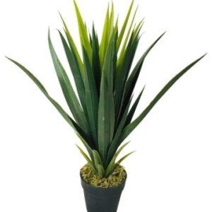 Fake Yucca Plants