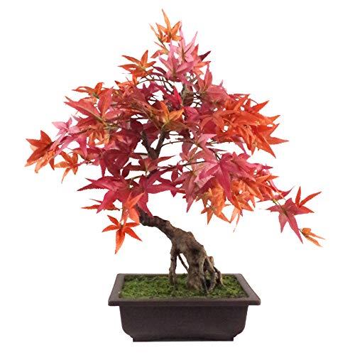 Leaf 50cm Artificial Red Maple Bonsai Tree, 60cm