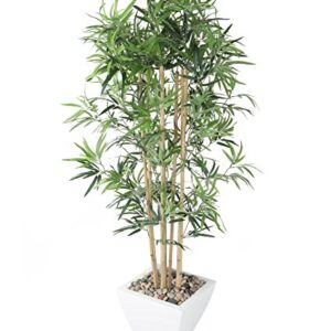 Artificial 5ft Golden Bamboo Tree