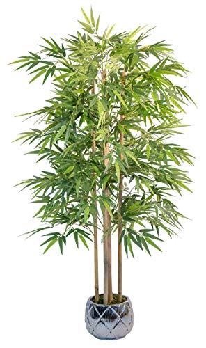 Fake Bamboo with Natural Canes