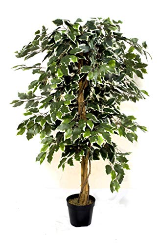 GreenBrokers Artificial Variegated Ficus Tree 4ft, Potted Plant