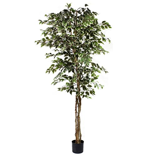OloreHome Artificial Ficus Tree Variegated 7ft / 210cm