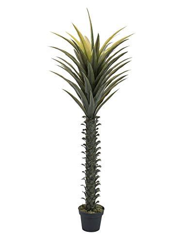artplants.de Artificial Yucca OWEN, 5ft/165cm - Fake palm tree/Palm replica