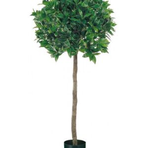Red Hot Plants PAIR of Artificial Bay Laurel Trees - 1.2m high tree with real wood trunk and natural leaf.