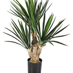 "artplants.de Plastic Yucca Shrub KEYLA DELUXE, 28""/70cm -Artificial Yucca palm/fake palm tree"