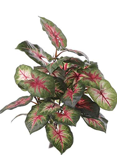 artplants.de Set 6 x Fake caladium SEVERIN on spike, green-red, 40cm - Artifcial foliage/Silk leaves