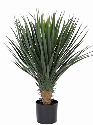 artplants.de Artificial yucca rostrata DRAKE, 80cm - Fake yucca plant/Faux tree