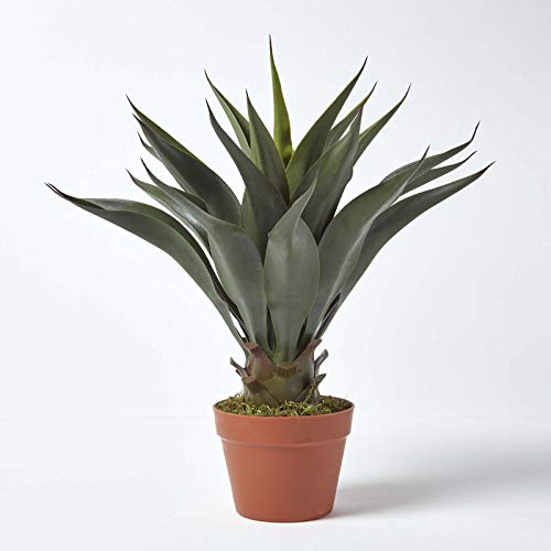 "HOMESCAPES Green Agave Americana Artificial Succulent Plant with Brown Pot, 60 cm (24"")"
