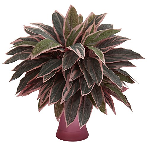 Nearly Natural Caladium Rose Vase Artificial Plant, Green