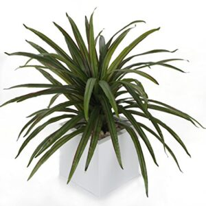 """Closer to Nature Artificial 2ft 1"""" Yucca Plant - Artificial Silk Plant and Tree Range"""