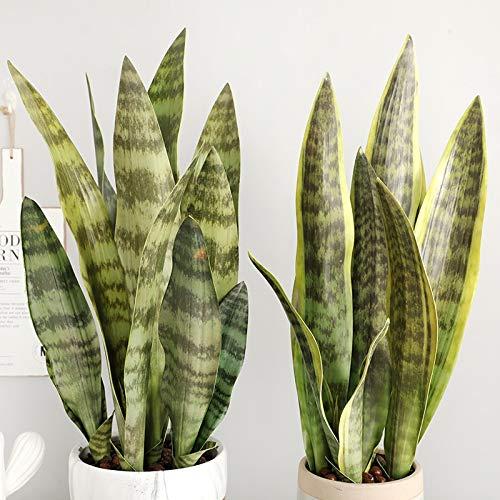 Artificial flower 1 Pcs Fake Desert Plants Artificial Flower Sansevieria Simulation Succulent Agave Plant Home Office Shop Garden Decor (random Delivery)