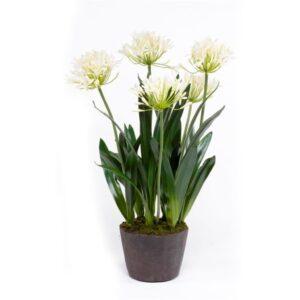 Artificial Agapanthus Plants UK