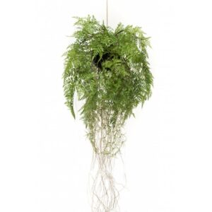 Emerald Artificial Hanging Fern with Roots 35 cm