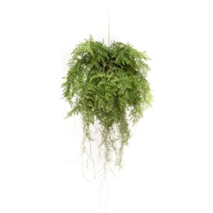 Emerald Artificial Hanging Fern with Roots 55 cm