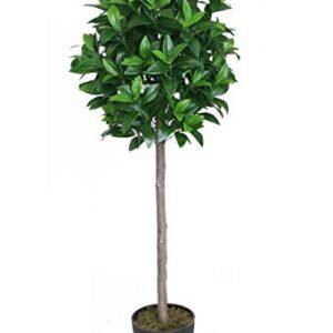 Best Artificial 4ft 120cm Bay Laurel Tree garden conservatory office plant (1)