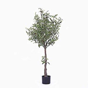 Fake Olive Tree